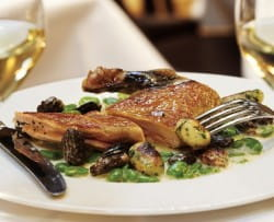 Supreme of guinea fowl with broad beans, fresh morels and herb gnocchi