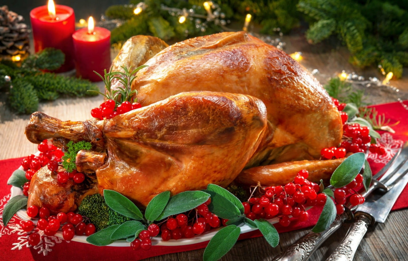 Top wines to drink with turkey | Matching Food & Wine