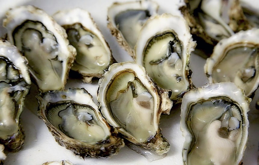 Top pairings | The best wine (and other) pairings with oysters